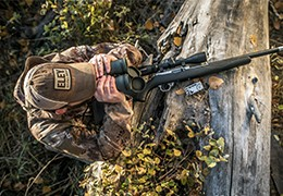 The best .22LR rimfire ammunition for small game hunting